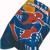 spidermansm